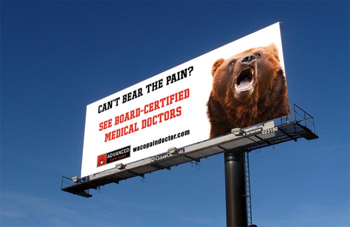 billboard bear