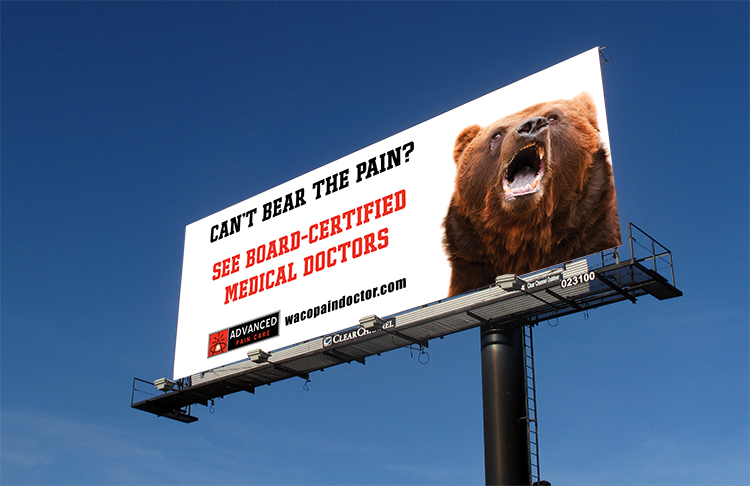 billboard bear