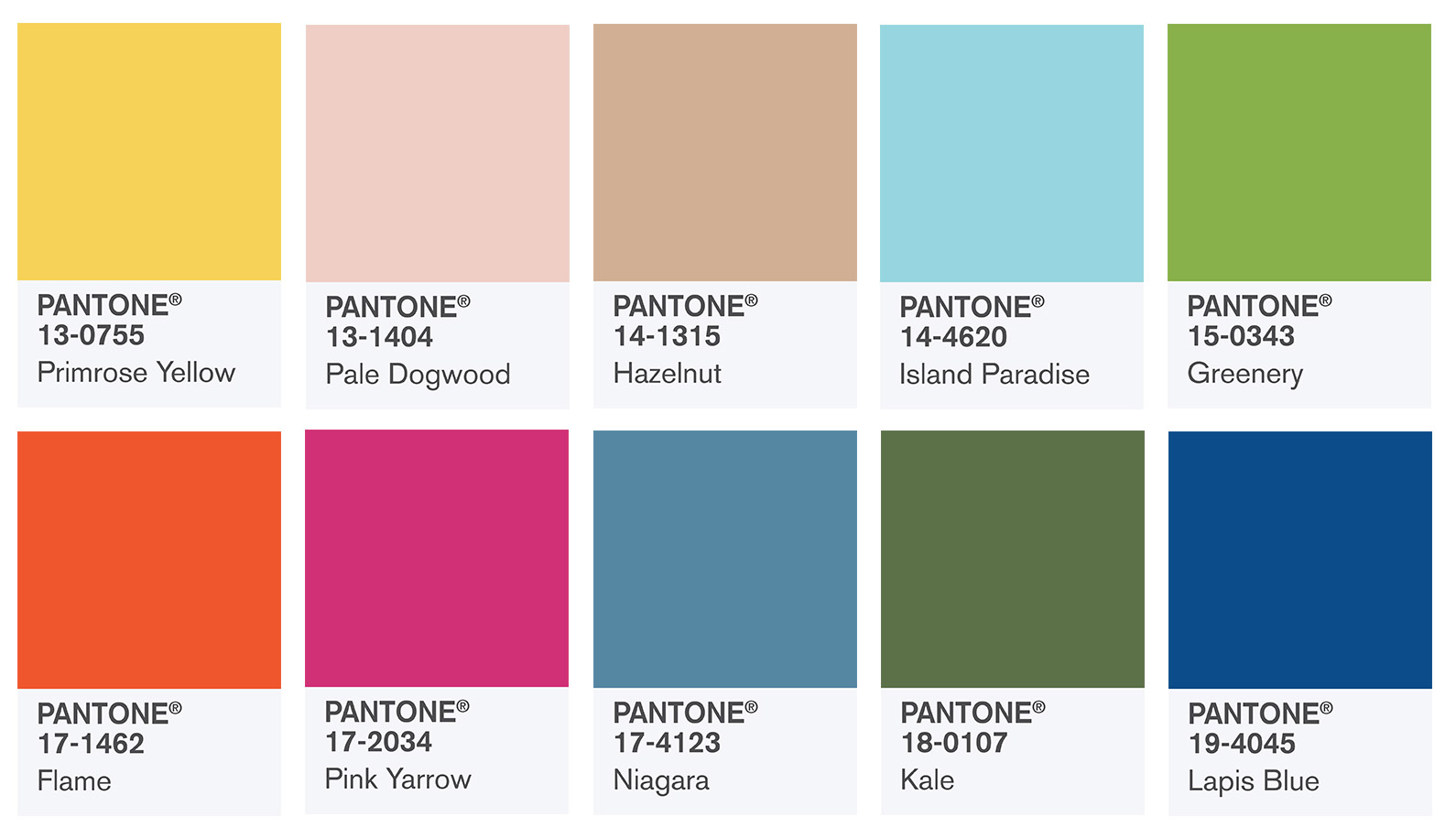 Spring 8 Pantone colors  Boise Website Design