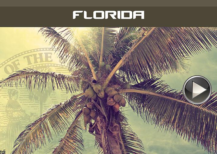 Car Park Florida